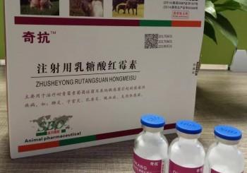 奇抗(注射用乳糖酸红霉素)